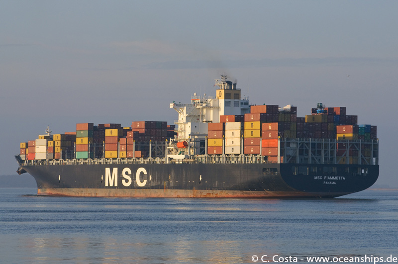 MSC-Fiametta24
