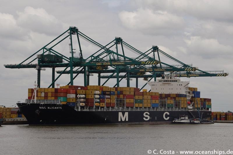MSC-Alicante03