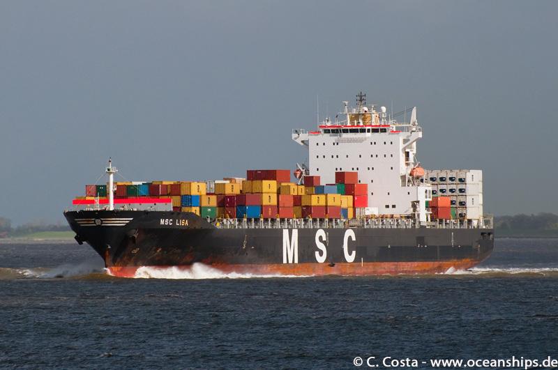 MSC-Lisa01